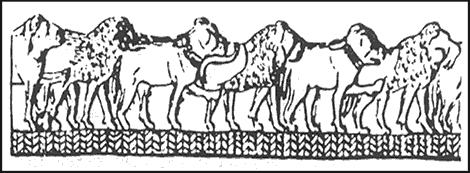Engravings on an ivory sceptre head found in Hierakonpolis, showing a row of lions and broad-skulled dogs