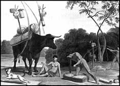 Illustration of a Khoikhoi family preparing to travel